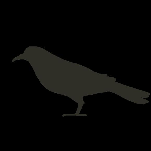 Profile picture for the comic artist, Bird