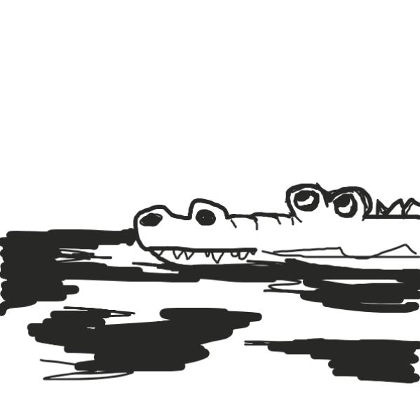 Drawing in Alligator  by Robro